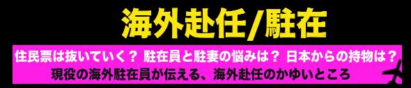 海外駐在員が解説!初めての海外赴任・海外転勤.com
